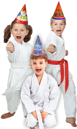 Martial Arts Birthday Party for Kids in Bossier City LA - Birthday Punches Page Banner